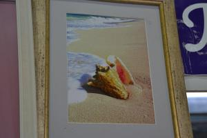 Ракушка на море Фото Охапки с Формулы рукоделия