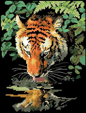 Пьющий тигр